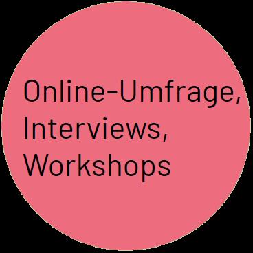 Online-Umfrage, Interviews, Workshops